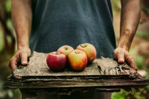 a man hlding several planks of wood that has four red apples ontop