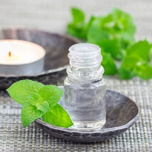 Small vial with a mint spring in a tortuios colored bowl. Behind it a tea candle in a similar bowl with more mint leaves.
